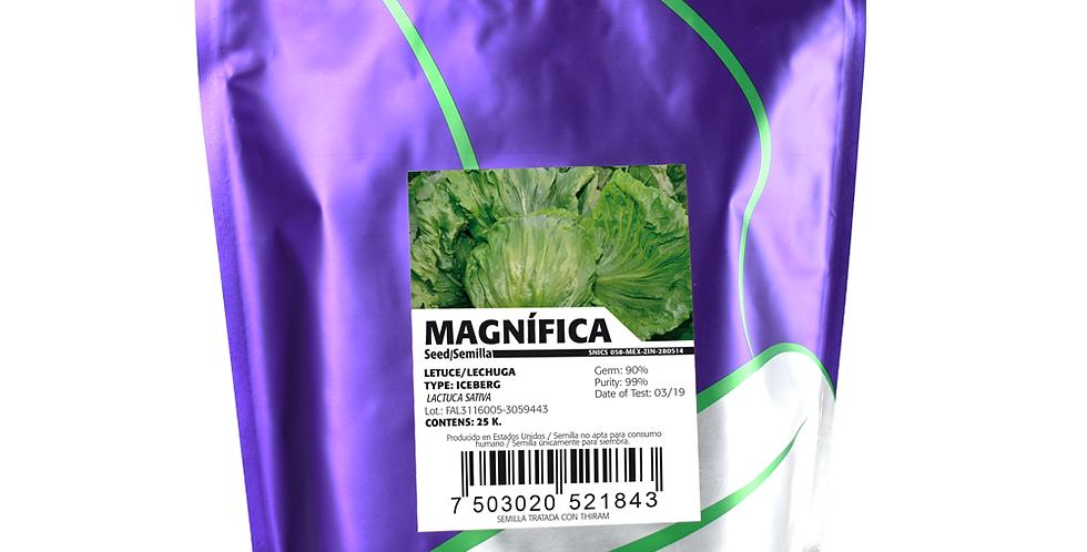 Lechuga Magnífica