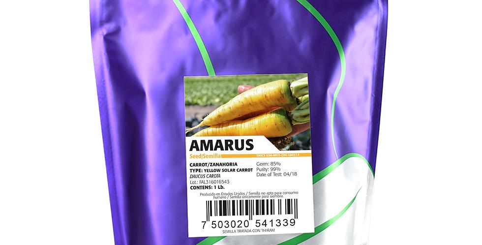 Zanahoria Amarus