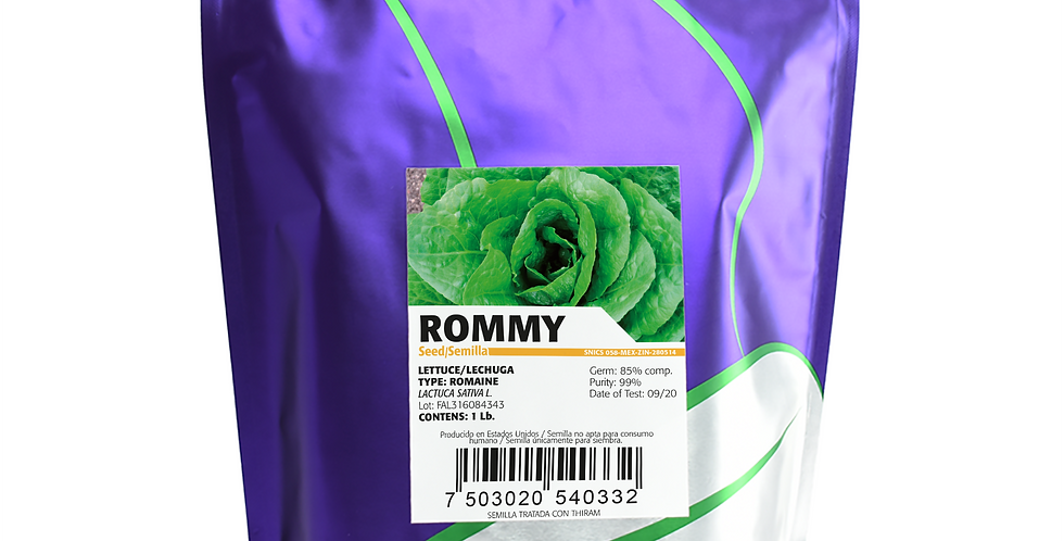 Lechuga Rommy