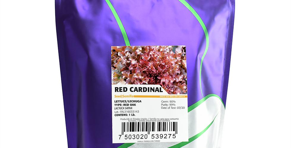 Lechuga Hoja Baby Red Cardinal