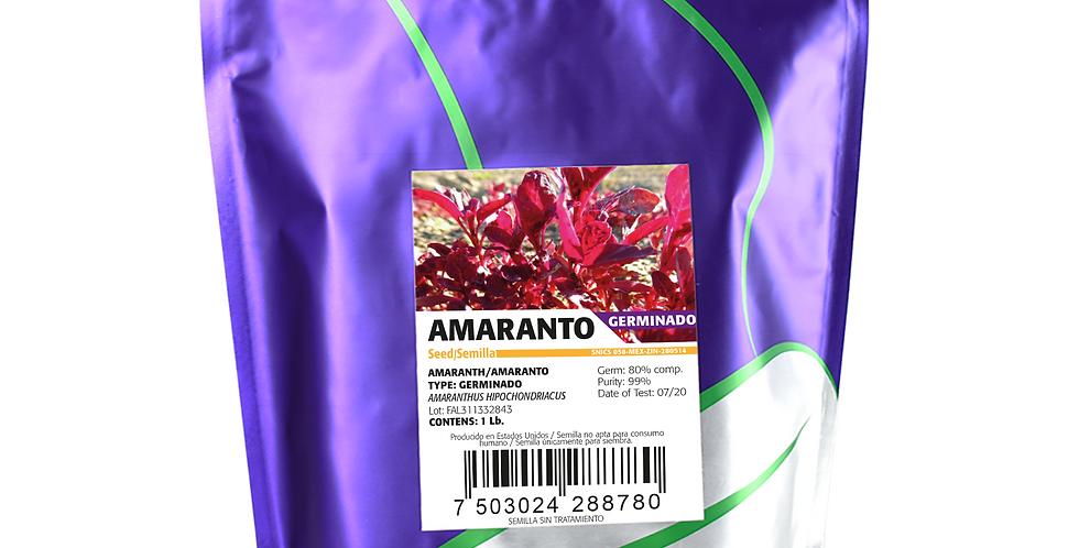 Germinado de Amaranto Rojo