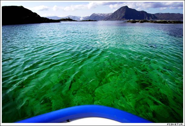 green_sea1_72