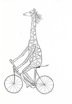 Giraffe_Fahrrad