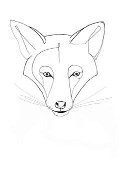 Fuchs_3