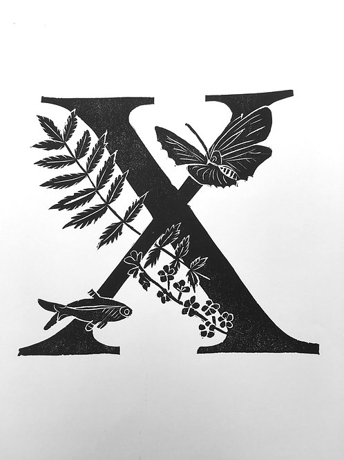 "Illustrated Alphabet ""X"""