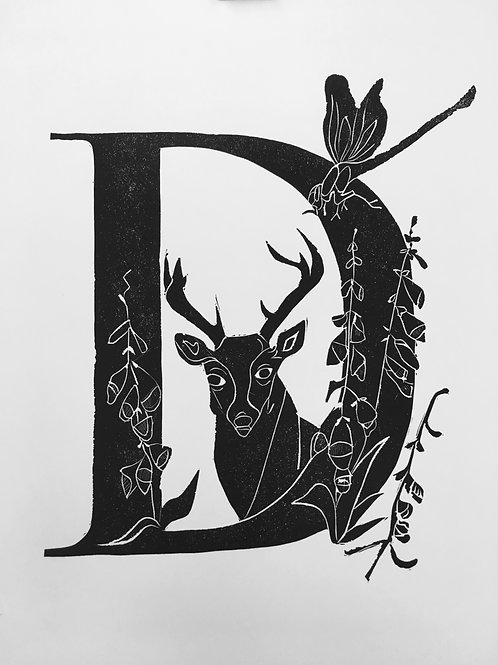 "Illustrated Alphabet ""D"""