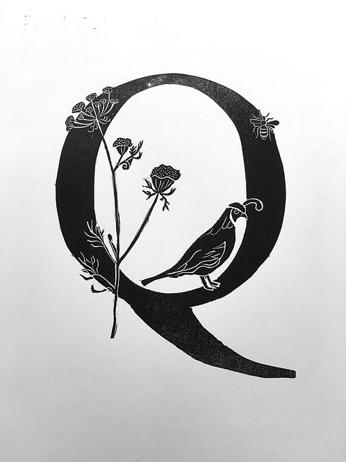 "Illustrated Alphabet ""Q"""