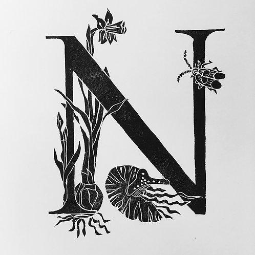 "Illustrated Alphabet ""N"""