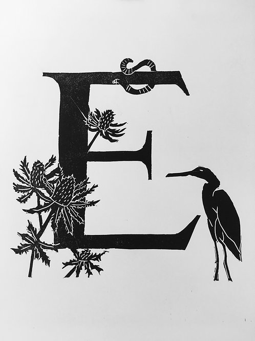 "Illustrated Alphabet ""E"""