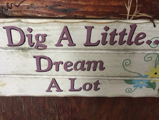 Dig a Little-Dream A Lot…Hello 2017