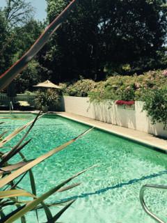 Pool Fun for summer
