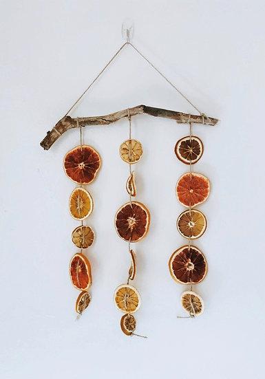 Citrus Wall Hanging