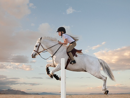 Animal Communication Helps a Girl and Her Horse Fall in Love Again