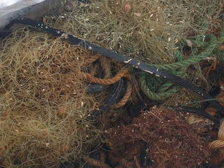 Rope and monofilament net recovered from Falmouth Wreck