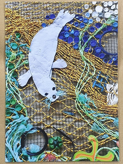 Card - Seal in nets