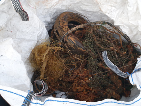 More ghost gear recovered from the Coroni River wreck in Falmouth Bay
