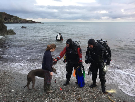 Talland Bay dive against debris and beach clean