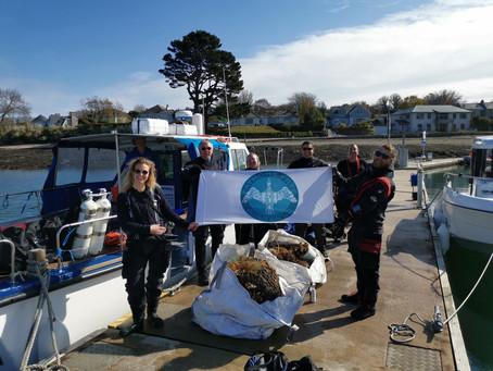 Successsful Ghost Gear and litter recovery on the SS Stanwood Wreck