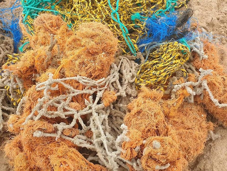 Large amount of net and monofilament line recovered from Watergate Bay, Newquay