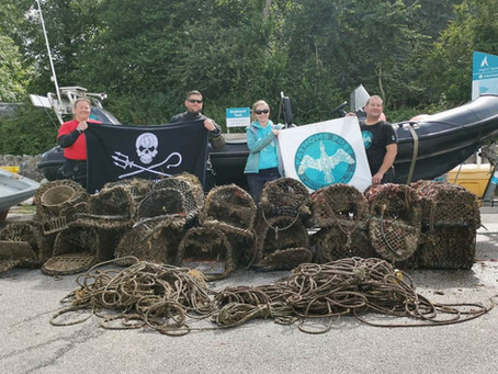 16 Lots lobster pots recovered from the Carrick Roads - Falmouth