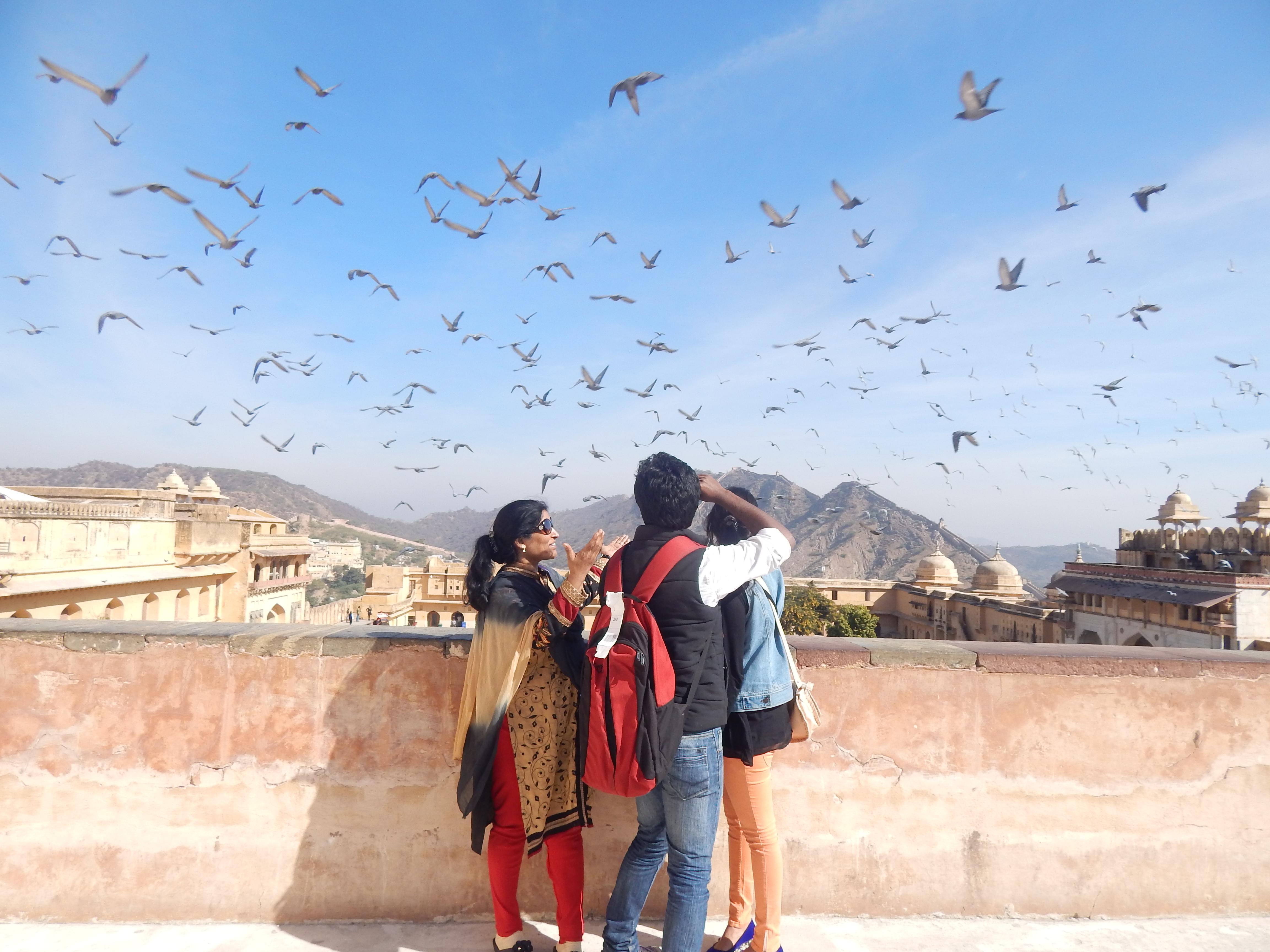 Jaipur...!!!