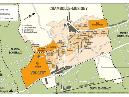 Views from the Cellar: Vosne-Romanee and Chambolle-Musigny