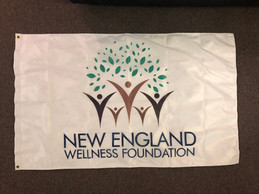 NE Wellness Foundation.JPG