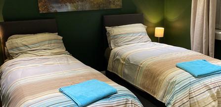 Wilson Street DS Back bedroom.JPG