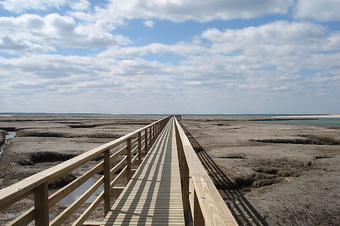 BASS HOLE BOARDWALK cr William DeSousa-M