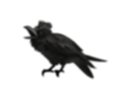 raven6.png