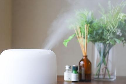 加湿器と空気の菌やウイルスを分解して消臭する。