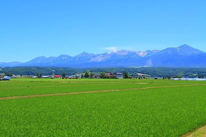 北海道の風景.jpg