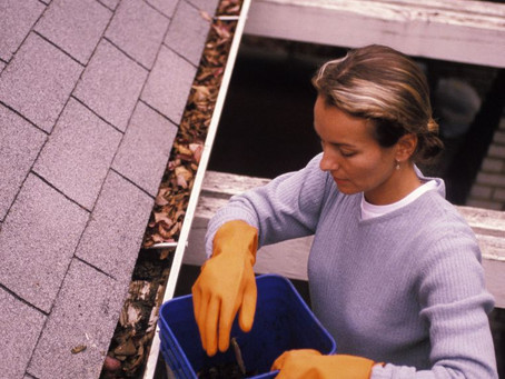 Learn How Professionals Clean your Gutters