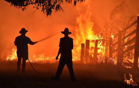 WHEN THE BUSH FIRE TURNS WILD