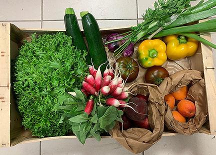 Panier fruits et légumes 2_10euros