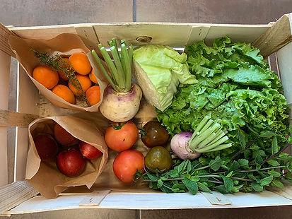 Panier_fruits_et_légumes_1_10euros.jpg