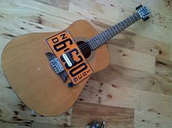 bastard acoustic