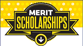 DDKF-Merit-Scholarship_uaqir2.png