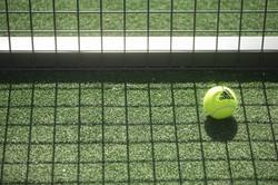 richings tennis membership