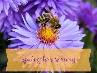 Spring has Sprung!  Where's my Epipen?!