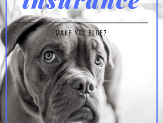 Does Insurance Make You Blue?