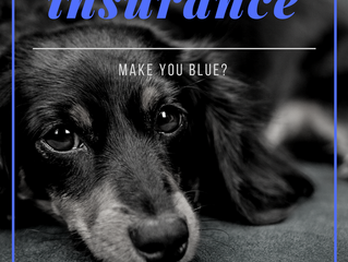 Does Insurance Make You Blue?             Part 2:  The Exchange