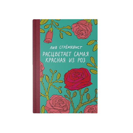 Расцветает самая красная из роз