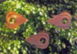 Crépin-Les yeux de cèdre bi.jpg