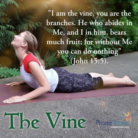 The vine posture