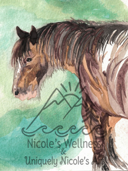 Clydesdale Companion