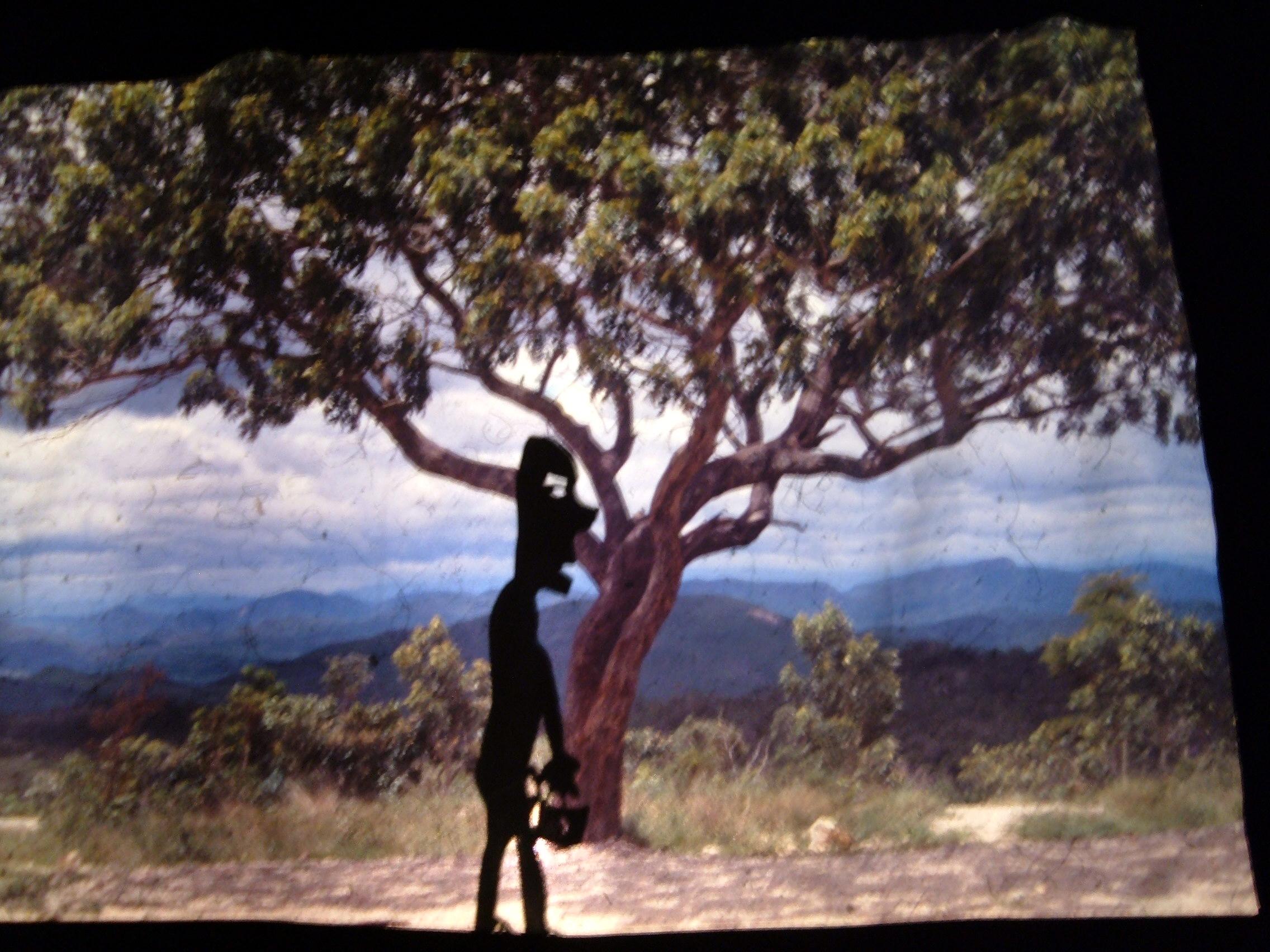 a princesa de bambulua - slide.jpg