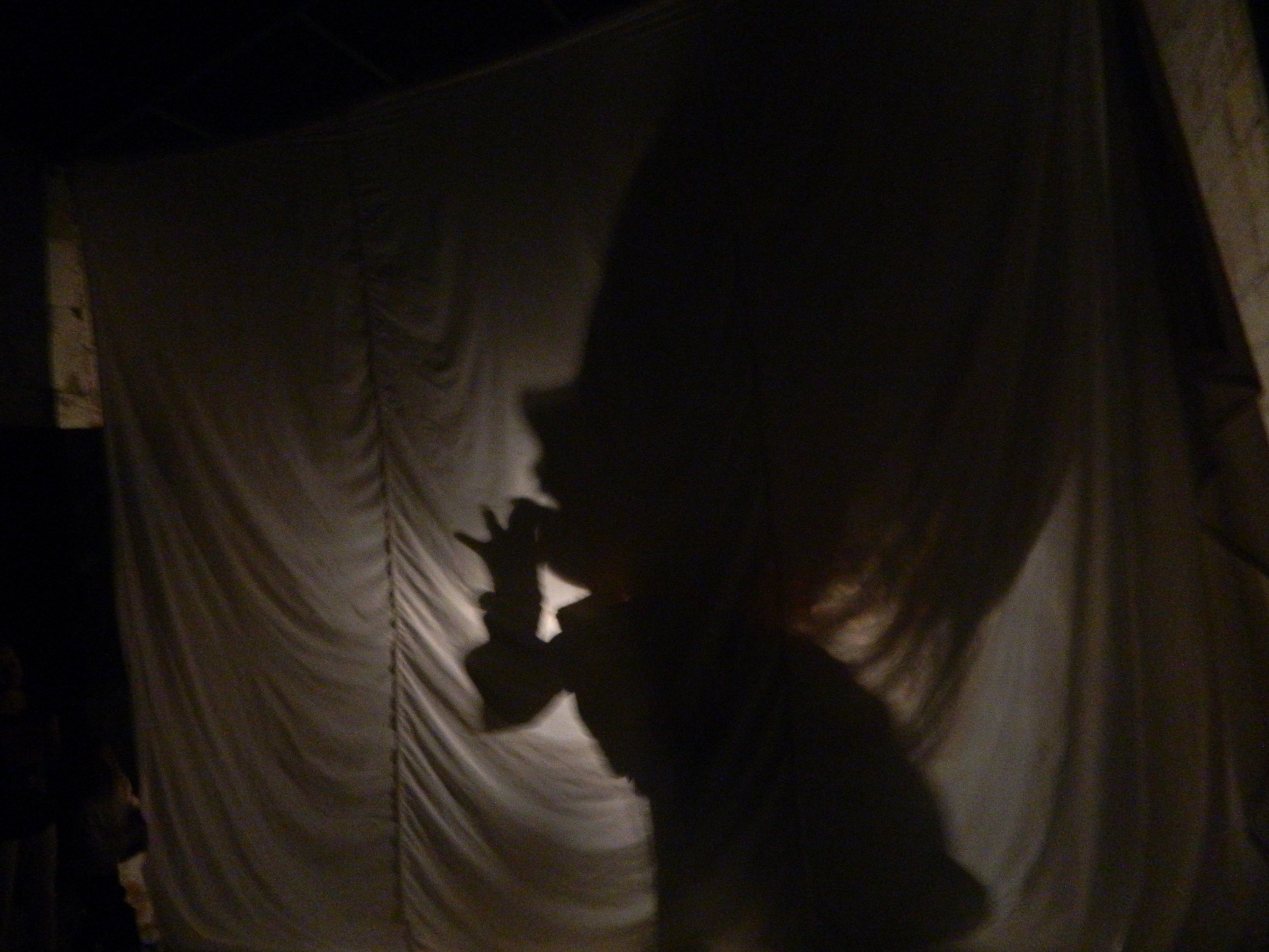 Shadow Theater workshop