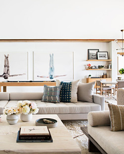 great-room-ideas-alexander-design-contem