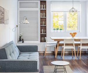 small-apartment-with-living-dining-combo